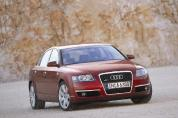 AUDI A6 2.0 TDI DPF Business (2006.)